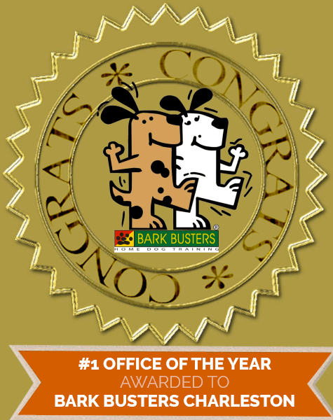 Bark Busters Office of the Year